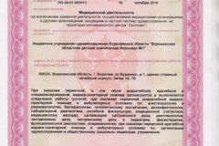 Litsenziya_19-003-616x462