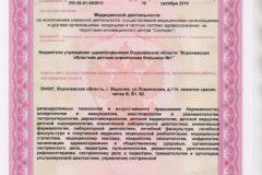 Litsenziya_19-021-489x367