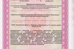 Litsenziya_19-021-744x1024