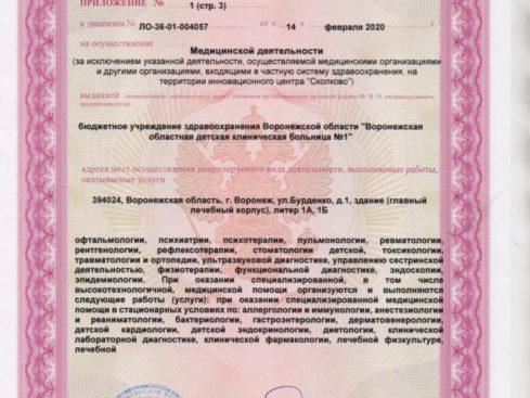 Litsenziya_20-005-489x367