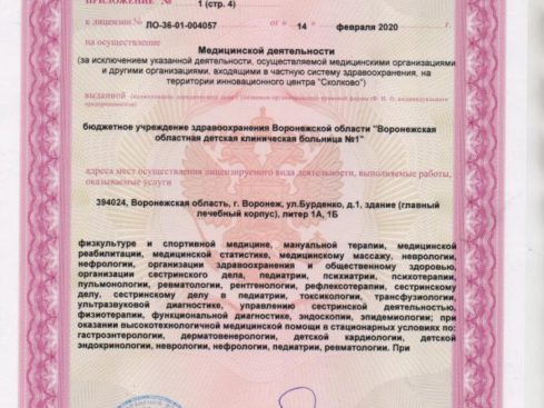 Litsenziya_20-006-489x367