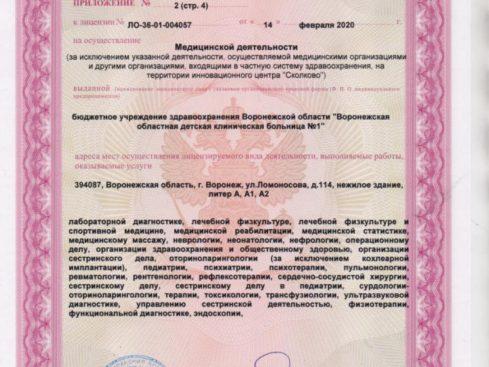 Litsenziya_20-011-489x367