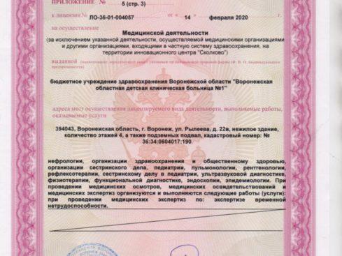 Litsenziya_20-025-489x367
