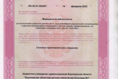 Litsenziya_20-001-489x367