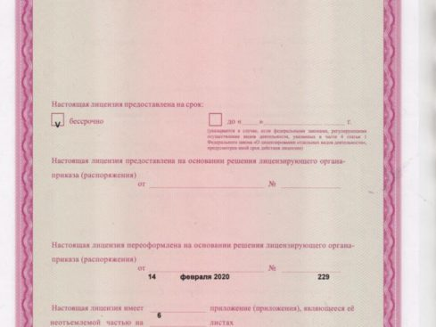Litsenziya_20-002-489x367