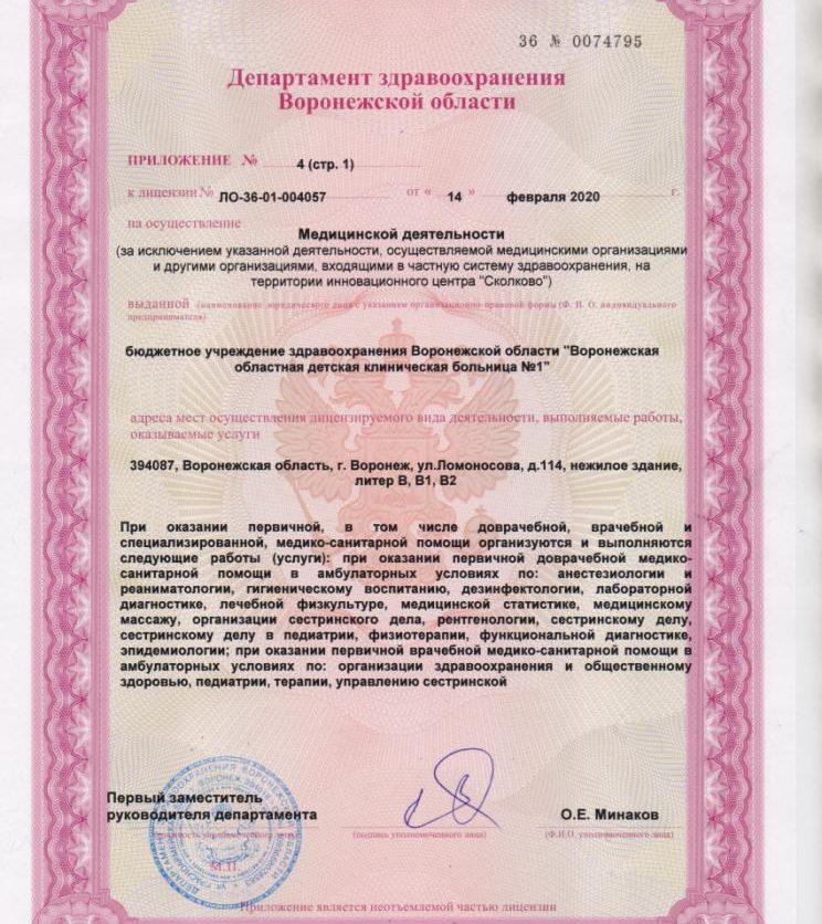 Litsenziya_20-018-744x836