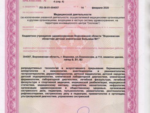 Litsenziya_20-021-489x367